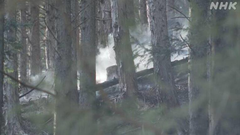 Imagens do incêndio florestal em Kiryu captadas pela emissora estatal NHK